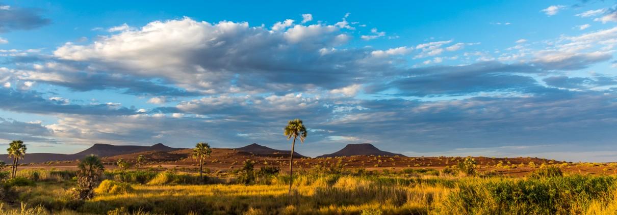 Il paesaggio intorno a Palmwag in Namibia