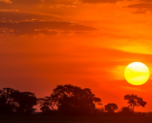 Tramonto africano nel kafue national park zambia