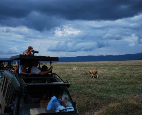 Viaggio fotografico nel cratere del Ngorongoro, Tanzania, patrimonio Unesco