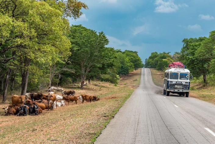 road scene in Zimbabwe