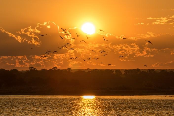 Simbabwe, sonnenuntergang am sambesi