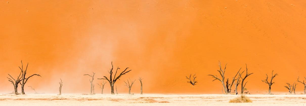 il famoso deadvlei con gli alberi morte nel deserto del namib