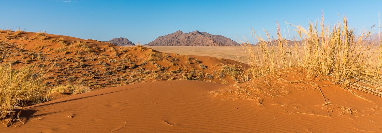 La duna Elim nel deserto del Namib vicino a Sesriem