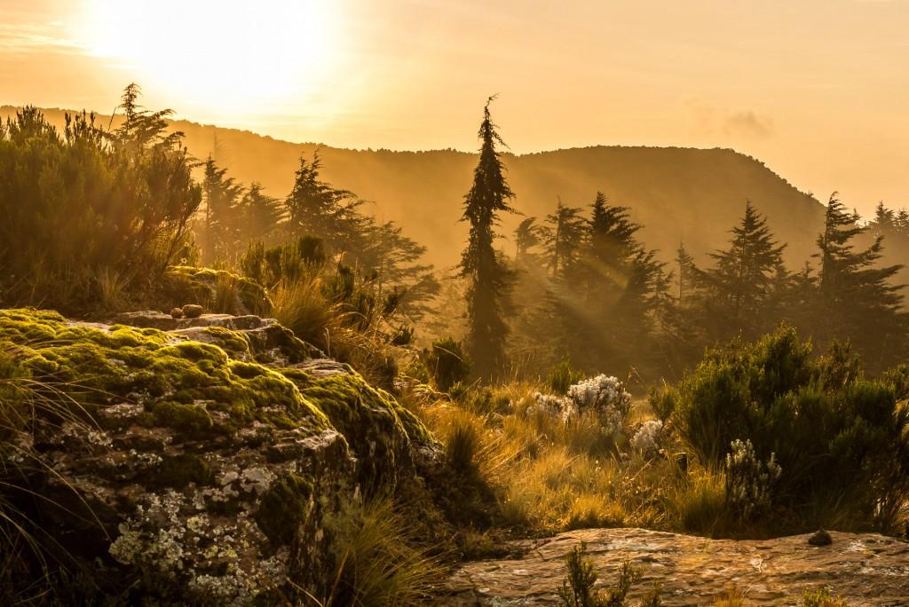 alba sugli altipiani etiopi