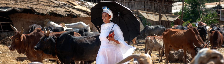 una donna attraversa il mercato del bestiame in etiopia