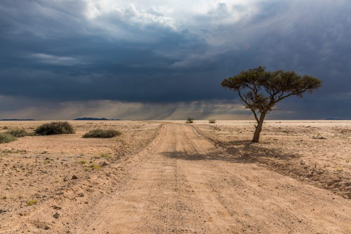 Thunderstorm in the Savannah, namibia