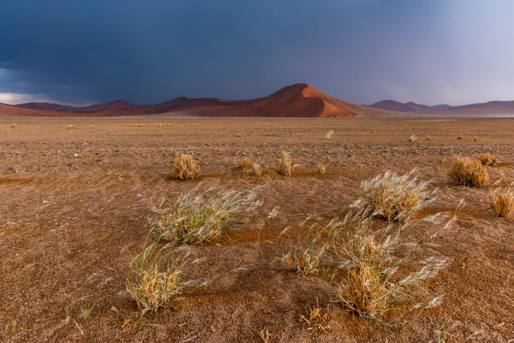 a thunderstorm in the Namib desert