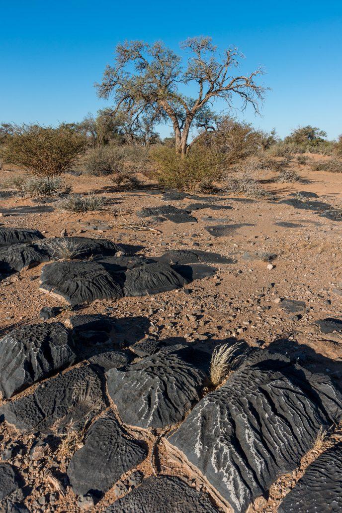 un paesaggio nel sud della Namibia con i sassi pelle d'elefante
