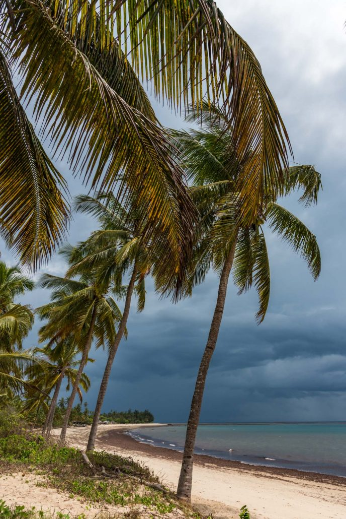 on the beach in pangani, tanzania