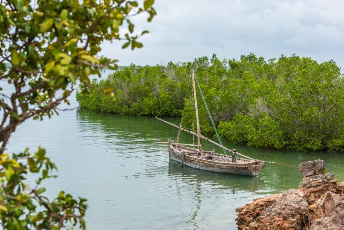 a traditional fishing boat, a dhow, in the waters near to kilwa in southern tanzania