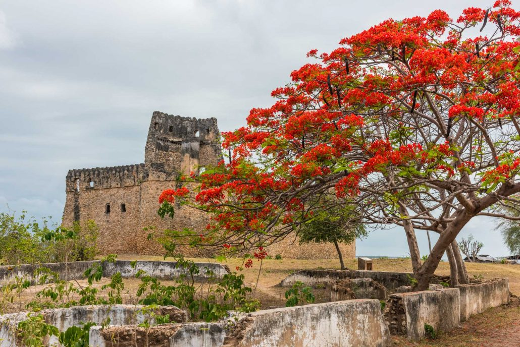 unesco world heritage site kilwa kisawani with a flame tree in foreground