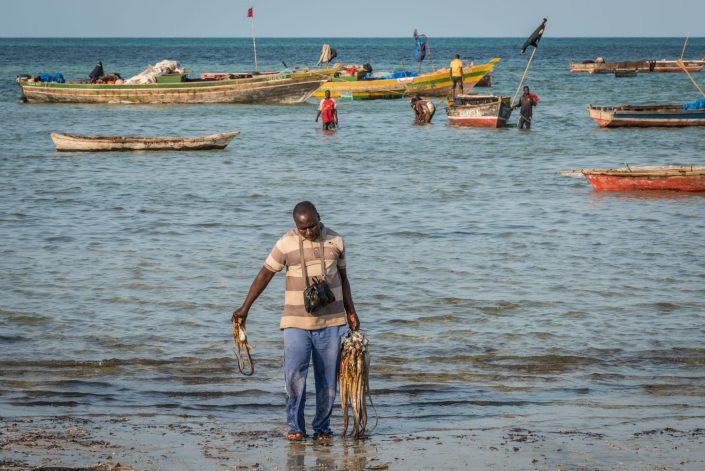 fishing village kilwa kivinje in the afternoon when fishermen come back