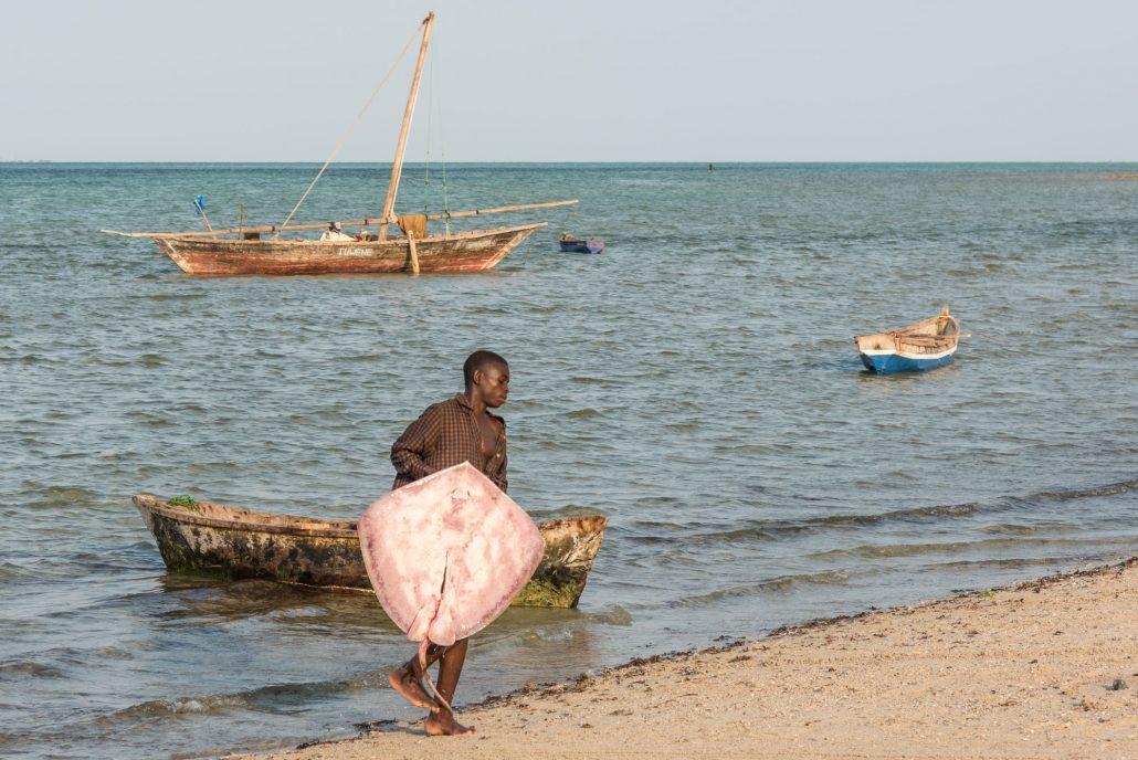taking fish on shore in Kilwa Tanzania