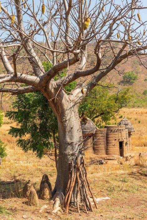 Koutammakou, Tamberma people. Unesco World Heritage site.