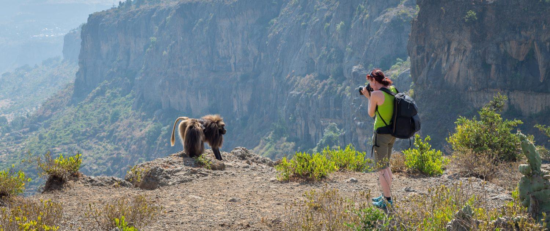 travel photographer catherina unger in ethiopia photographing a gelada ape