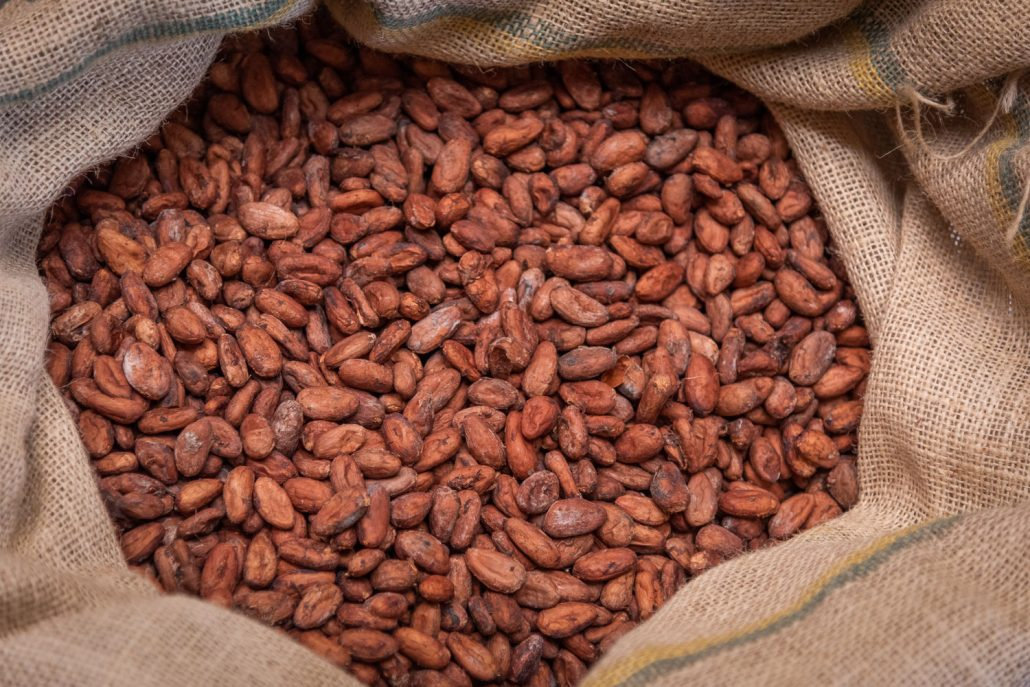 cocoa beans principe island
