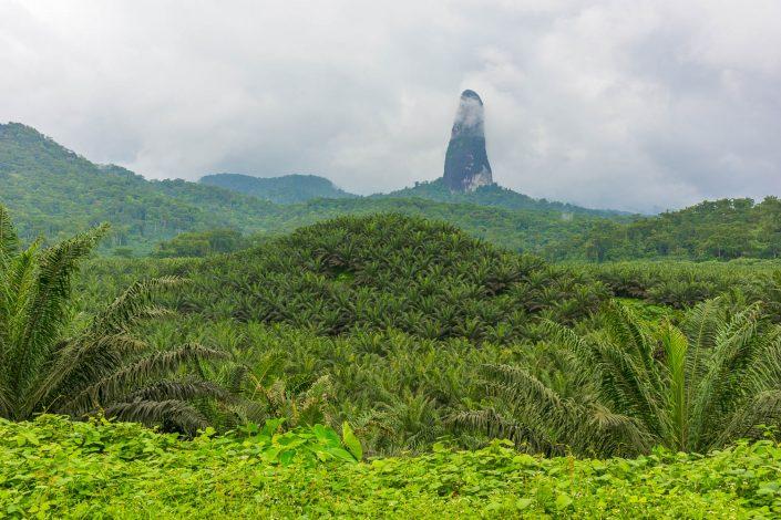Landscape Sao Tome